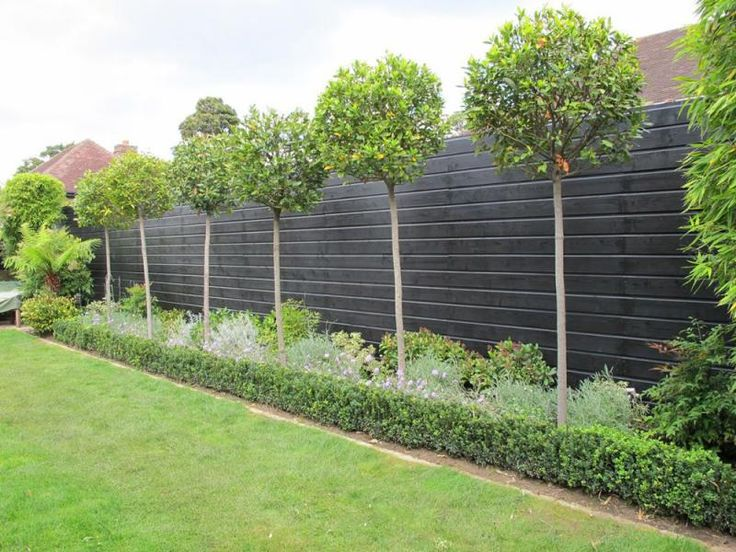 Where to buy garden fence panels in Liverpool